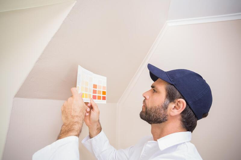 professional painter checking paint color